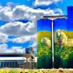 10 Day Central West NSW Silo Art Tour 2022